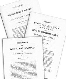 Trabajos publicados en la Real Sociedad Española de Histología Natural