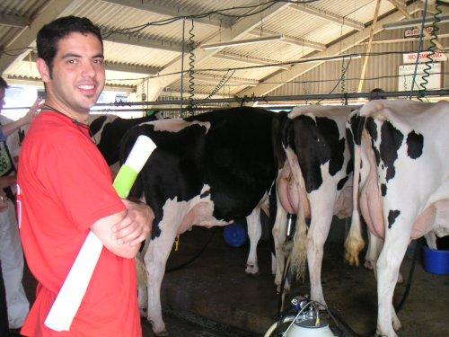 Gregorio en una explotación con vacas