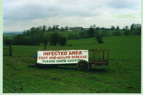Carteles en ganaderías inglesas afectadas por fiebre aftosa